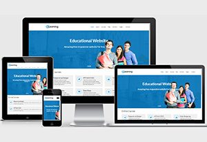 300x205 E Learning Website