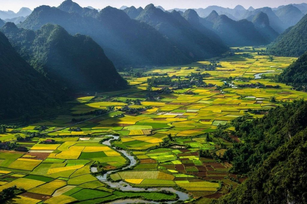 Why Localize your content into Vietnamese